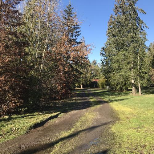 Scenic land ready for the right developer in Ridgefield, Washington
