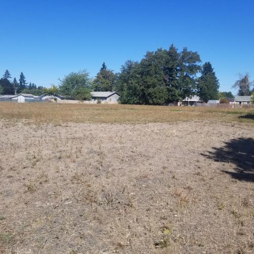 Developable land in high traffic portion of Springfield, Oregon with plenty of untapped potential
